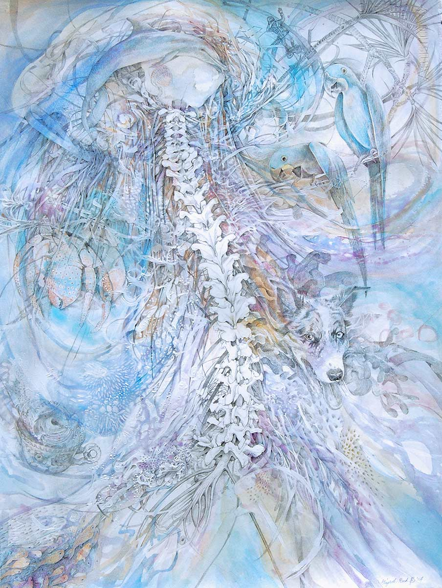 ALLUVION-spine-drawing-of-water-and-florida-by-artist-Elizabeth-Reed