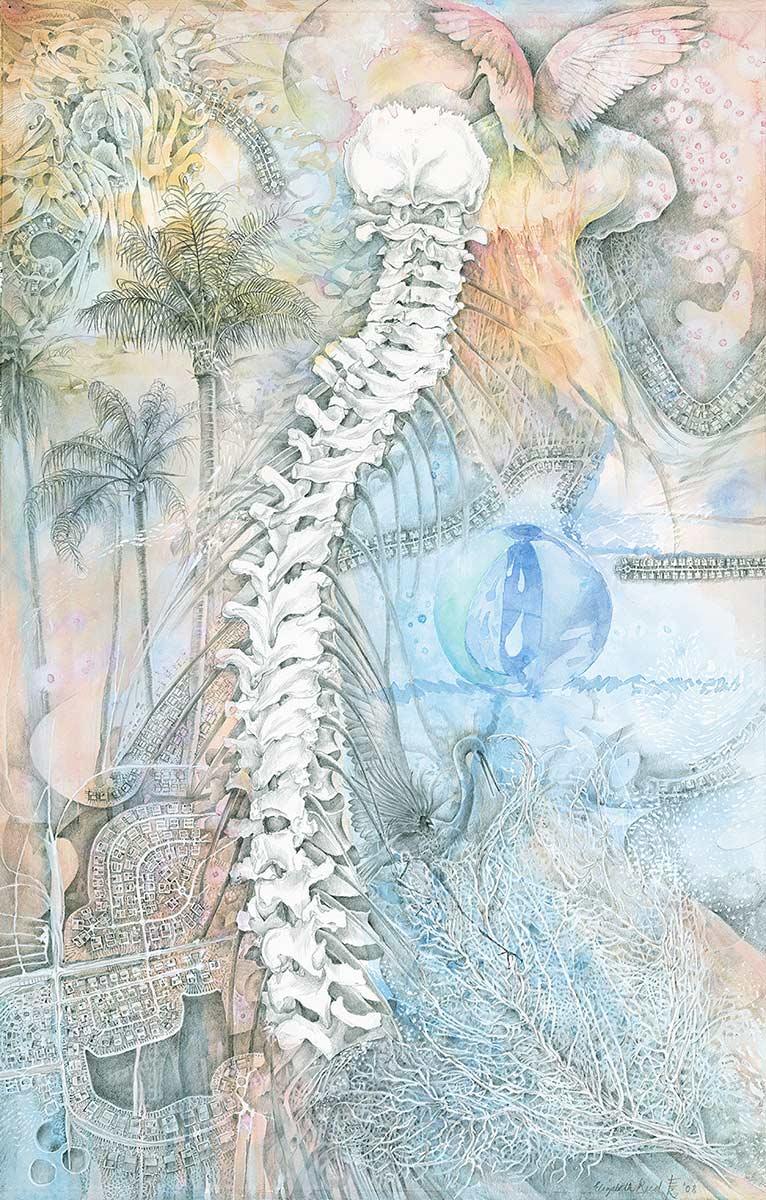 RIVERSIDE-spine-drawing-by-artist-Elizabeth-Reed-roseate-spoonbill-suburban-Florida-shells-water