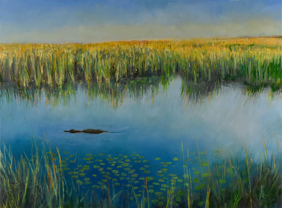 The Everglades at sunrise